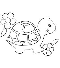 Tranh tô màu con rùa đẹp và dễ thương nhất dành tặng bé yêu