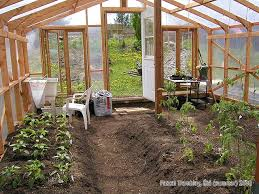 green house interior. glasshouse - lean to greenhouse hothouse plant seedlings tables hydroponic green house interior c