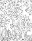 Волшебное дерево раскраска