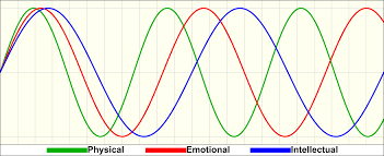 Biorhythm Wikipedia