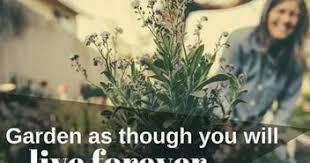 essay on gardening in urdu  essay on gardening in urdu