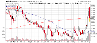 Penny Stocks On The Move On Sept 04 Nviv Pven Ambs