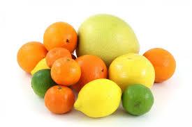 Citrus Fruits Planting Growing And Harvesting Lemons