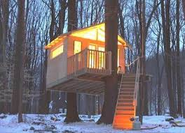 Double Tree Cabled up Treehouse Plans Treehousescom