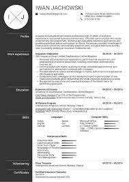 Resume Examples By Real People Insurance Underwriter Resume