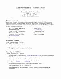 Customer Service Resume Summary Resume Summary Examples for Customer Service Best Of Example Resume 1