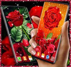 3D Red Rose Live Wallpaper para Android ...