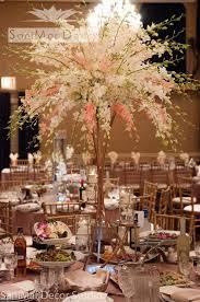 Decorated Reception Halls Wedding Event Albums