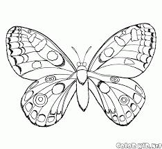 Disegni Da Colorare Farfalla In Volo