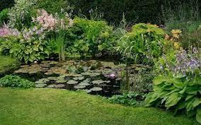 small gardens garden pond design