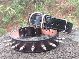 home finished goods dog collars leashes tags dog collars bad dog bad dog 1 1 2 spike collar 1 1 4 spikes bd24