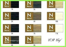 Chi Ionic Permanent Shine Hair Color Chart Chi Ionic Hair Color Fajarpapua Co
