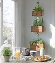 indoor apartment gardening. Exellent Apartment Someone Wanting Some Greenery In Their Apartment Go Talk To Your Local  Nursery Professional Get Ideas Or Started Take A Look At This Intended Indoor Apartment Gardening E