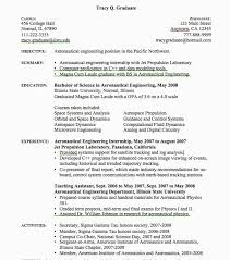 8 Objective In A Resume For Internship Lscign