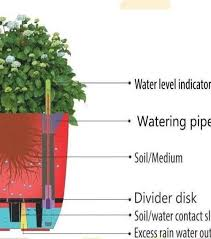 Perfect Self Watering Planter   Pink, Plants,seeds, Organic, Watering, House,