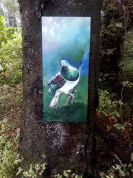 new zealand kereru native wood pigeon outdoor wall art satherley silks nz on outdoor wall art new zealand with new zealand kereru native wood pigeon outdoor wall art