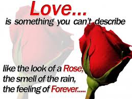 Just Wanted To Say I Love You Quotes Mesmerizing Just Wanted To Say I Love You Quotes Print Best Quotes Everydays