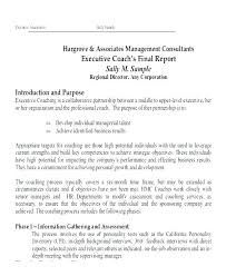 format of a management report business management report template project status process