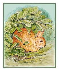 Details About Beatrix Potter Peter Rabbit Hiding Counted Cross Stitch Chart Pattern