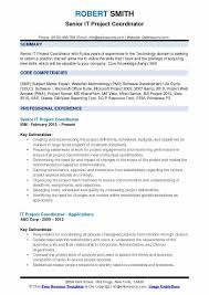 IT Project Coordinator Resume Samples QwikResume Delectable Project Coordinator Resume
