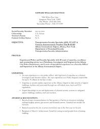 Security Guard Duties And Responsibilities Resume