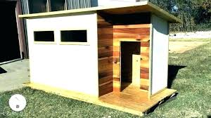 small dog houses for inside indoor house large dogs ideas stair plans big