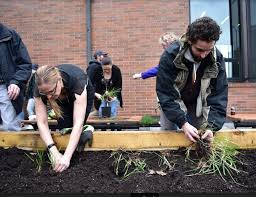 douglas college employees helping with the aboriginal garden at the new westminster campus