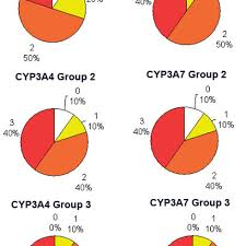 Pie Charts Illustrating The Percentage Of The Different