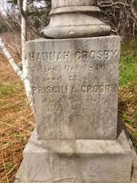Priscilla Crosby (1845-1845) - Find A Grave Memorial
