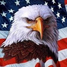 Patriotic Eagle (@InquiringEagle) | Twitter