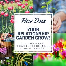 how does your relationship garden grow