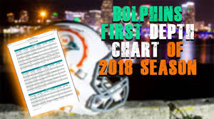 Miami Dolphins First Depth Chart Miami Dolphins Fan Reaction