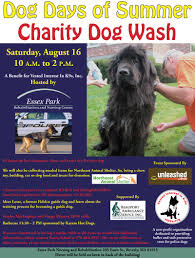 past events vested interest in k s inc dog days of summer