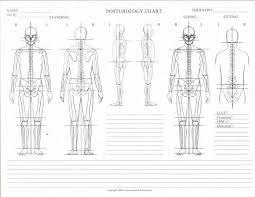 Posturology Chart Blank Massage Therapy Physical Therapy
