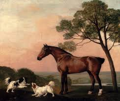 a bay hunter with two spaniels