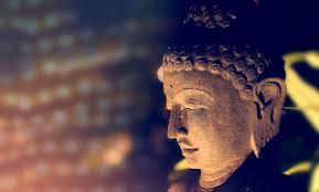 20 Authentic Buddha Quotes From The Dhammapada Balanced Achievement