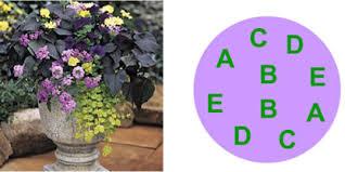 Flower Bed Ideas For Full Sun Zone 6  Garden Ideas  Pinterest Container Garden Ideas Full Sun