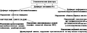Реферат Мегалобластные и гемолитические анемии ru В12 дефицитная анемия