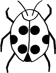 bug clipart black and white. white bug cliparts #2447294 clipart black and o