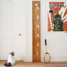 Giant Ruler Growth Chart Wall Decal