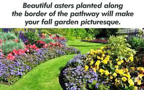 fall garden flowers. Fall Garden Flowers R