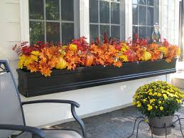 Decorating Window Boxes For Winter