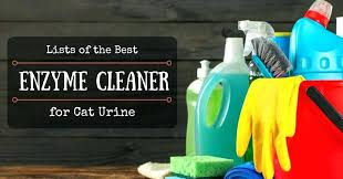 top rated pet urine odor remover lists of the best enzyme cleaner for cat dog reviews
