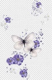 Butterfly Desktop Color , magnolia ...
