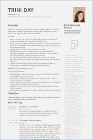 Freelance Writer Resume Objective Sample Resume For Freelance Writer Globishme 66