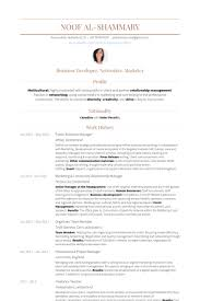 Marketing & Community Relationship Manager Resume samples