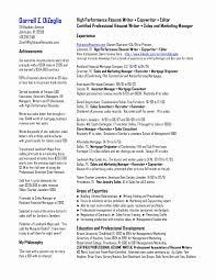 Professional Summary Resume Examples Awesome Writing Resume