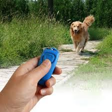 Click With Training,<b>Pet Hot Puppy Sale</b>!<b>Combo Dog</b> Guide,With ...