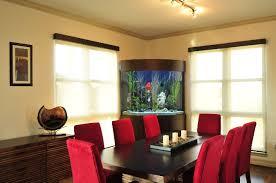 aquarium office. Aquarium For Office Room