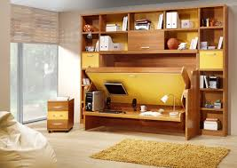 Charming Small Room Idea For Kids With Murphy Bed Also Storage Wall Shelves  And Green Mat